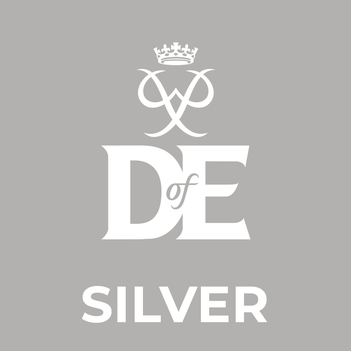 square level logo SILVER